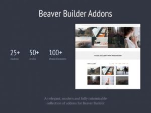 Livemesh – Addons for Beaver Builder Pro