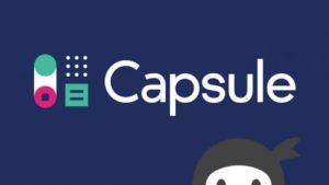 Ninja Forms – Capsule CRM
