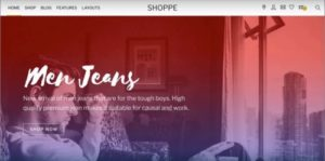 Themify – Shoppe