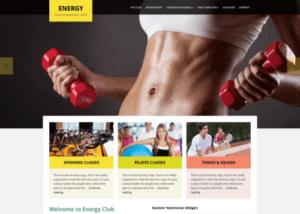 WPZOOM – Energy